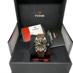 Tudor_58